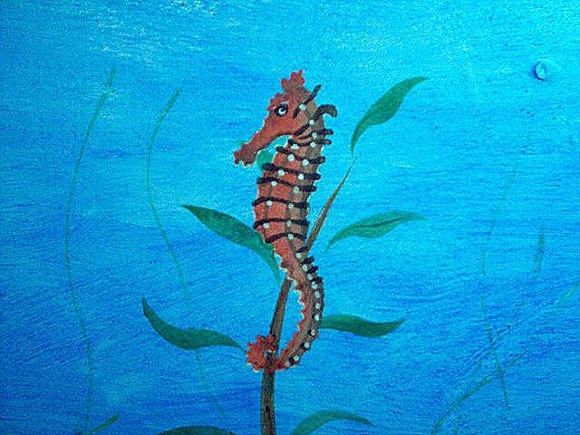 The Sea Animal